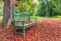 Bench in autumnal park wooden under tree on the ground covered with red fallen leaves piedmont italy Royalty Free Stock Photo