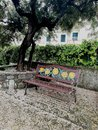 The bench and the carpet of flowers Royalty Free Stock Photo