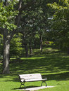 Bench in a city park. City of Toronto. Canada. Stock Photo