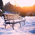 Bench in city park at winter Royalty Free Stock Photo