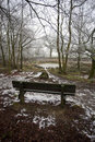 Bench in cold forest Royalty Free Stock Photo