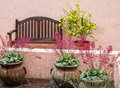 Bench and flowering plants Royalty Free Stock Photo