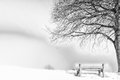 Bench, foggy winter day Royalty Free Stock Photo
