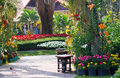 Bench in garden and colorfull of flower Stock Photography