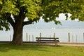 Bench at the lake 2 Royalty Free Stock Photo