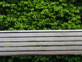 Bench with leaves Stock Photos