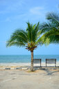 Bench near beach with green coconut tree Royalty Free Stock Photo