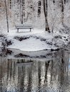 Bench Near Creek in Winter Forest, Fresh Snow Royalty Free Stock Photo