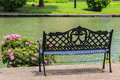 Bench near the lake in the tropical garden summer Stock Image