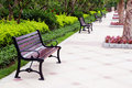 Bench in park Royalty Free Stock Photo