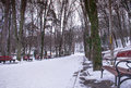 Bench in park winter Royalty Free Stock Photo