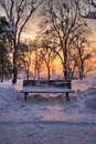 Bench in a park in winter sunset landscape Royalty Free Stock Photo