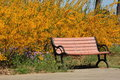 Bench in the park with yellow flower background Royalty Free Stock Photography