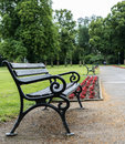 Bench after the rain Royalty Free Stock Photo