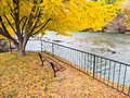 Bench on the river in Autumn Royalty Free Stock Photo