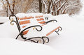 Bench in snow covered winter park on avenue cloudy day Royalty Free Stock Image