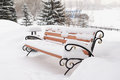 Bench in snow covered winter park cloudy day Stock Photos