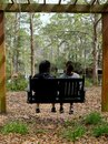 Bench Swing for Two in Backyard Setting Royalty Free Stock Photo