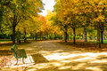 Bench tiergarten berlin beginning autumn Royalty Free Stock Photo