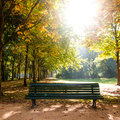 Bench tiergarten berlin late summer Royalty Free Stock Image