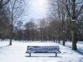 A bench in tiergarten berlin and sunlight winter Stock Image