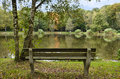Bench in wood by the lake in authumn Royalty Free Stock Image