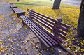 Benches group in autumn park Royalty Free Stock Photo