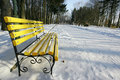 Benches in a park covered with snow Stock Image