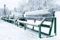 Benches in the park at winter Royalty Free Stock Image