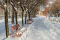 Benches in winter park sunny Royalty Free Stock Images