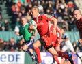 Benetton filiżanki europa Munster rugby vs Obrazy Royalty Free