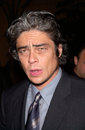 Benicio del toro actor at the world premiere in hollywood of his new movie the pledge jan paul smith featureflash Stock Photo