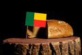 Benin flag on a stump with bread Royalty Free Stock Photo