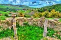 Berbero-Roman ruins at Djemila in Algeria Royalty Free Stock Photo