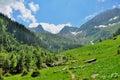 Bergwegen en majestueuze meningen van de karpaten Royalty-vrije Stock Afbeelding