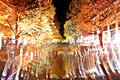 Berlin festival of lights october unter den linden street lit by night time colorful illumination creative motion camera blur Stock Images