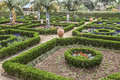 Bermuda botanical gardens clipped boxwood hedges are part of the formal in the Stock Photos