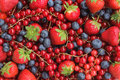 Berries background - strawberries, blueberries, red currants Royalty Free Stock Photo