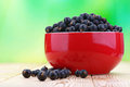 Berries black currants in bowl on green background Stock Photo