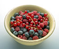 Berries in bowl against white and grey background Royalty Free Stock Image