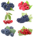 Berries collection tasty and useful for every taste Royalty Free Stock Image