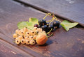 Berries of the currants and the gooseberry on wood in a countryside Stock Photo