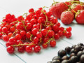 Berries different kinds of on the blue background shallow dof Stock Photos