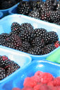 Berries at farm market Royalty Free Stock Image