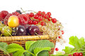 Berries and fruits assortment Royalty Free Stock Image