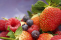 Berries macro image of multiple Royalty Free Stock Image