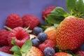 Berries macro image of multiple Royalty Free Stock Photos