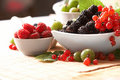 Berries in plates Stock Image