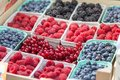 Picture : Berries, Raspberries, Blueberries: Berries different kinds and colors, in Boxes, on sale time