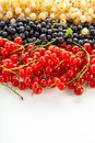 Berries ripe blueberries red and white currants on a white background Royalty Free Stock Images